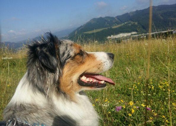 Eliška radí: 6 tipov proti jarnej únave